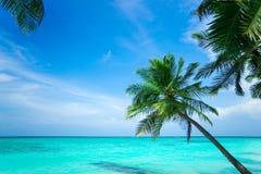 Τέλεια τροπική παραλία παραδείσου νησιών Στοκ φωτογραφία με δικαίωμα ελεύθερης χρήσης
