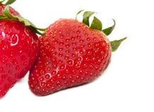 τέλειες φράουλες Στοκ Φωτογραφία