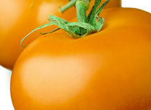 Τέλειες φρέσκες κίτρινες ντομάτες Στοκ φωτογραφία με δικαίωμα ελεύθερης χρήσης