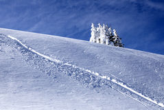 Τέλειος χειμώνας Στοκ εικόνες με δικαίωμα ελεύθερης χρήσης