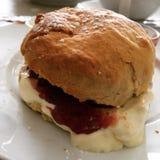 Τέλειο αγγλικό scone Στοκ Φωτογραφία