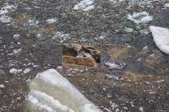 Τήξη άνοιξη του πάγου, thaw άνοιξης Στοκ εικόνες με δικαίωμα ελεύθερης χρήσης