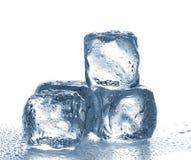τήξη πάγου κύβων Στοκ φωτογραφίες με δικαίωμα ελεύθερης χρήσης