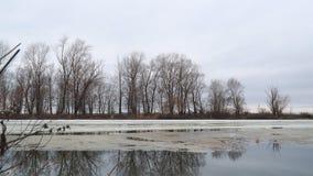 Τήξη του τελευταίου πάγου στον ποταμό την πρώιμη άνοιξη μια νεφελώδη ημέρα φιλμ μικρού μήκους
