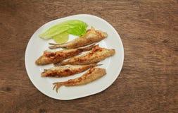 Τήξη ψαριών που τηγανίζεται σε ένα πιάτο Τοπ όψη Στοκ εικόνες με δικαίωμα ελεύθερης χρήσης