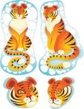 τίγρες απεικόνιση αποθεμάτων