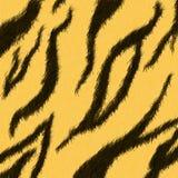 τίγρη δερμάτων Στοκ φωτογραφία με δικαίωμα ελεύθερης χρήσης