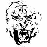 Τίγρη (κεφάλι) Στοκ φωτογραφία με δικαίωμα ελεύθερης χρήσης
