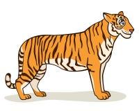 Τίγρη κινούμενων σχεδίων ελεύθερη απεικόνιση δικαιώματος