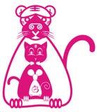 τίγρη ποντικιών γατών Στοκ εικόνα με δικαίωμα ελεύθερης χρήσης