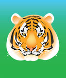 τίγρη πορτρέτου Στοκ Φωτογραφία