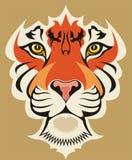 τίγρη προσώπου Στοκ φωτογραφία με δικαίωμα ελεύθερης χρήσης