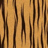τίγρη σύστασης γουνών Στοκ εικόνα με δικαίωμα ελεύθερης χρήσης