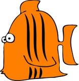 τίγρη ψαριών ελεύθερη απεικόνιση δικαιώματος