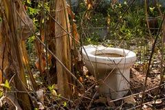 Τίποτα υπαίθρια τουαλέτα στη δασική κάλυψη, τουαλέτα στοκ φωτογραφίες με δικαίωμα ελεύθερης χρήσης