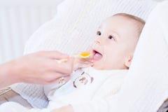 Ταΐζοντας αγοράκι μητέρων με το κουτάλι μωρών Στοκ Εικόνα