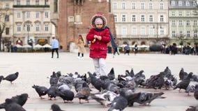 Ταΐζοντας περιστέρια κοριτσιών στο κεντρικό τετράγωνο της Κρακοβίας, Πολωνία απόθεμα βίντεο