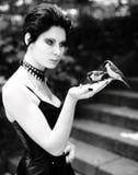 Ταΐζοντας πουλιά Goth στοκ εικόνες με δικαίωμα ελεύθερης χρήσης