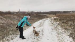 Ταΐζοντας σκυλί basenji γυναικών περπατώντας υπαίθριος στη χειμερινή εποχή φιλμ μικρού μήκους