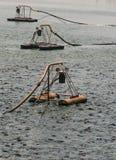 ταΐζοντας ψάρια Στοκ εικόνες με δικαίωμα ελεύθερης χρήσης