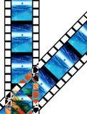 Ταινία 9 διανυσματική απεικόνιση