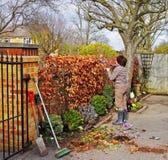 τακτοποίηση φρακτών κηπο&upsi στοκ φωτογραφίες