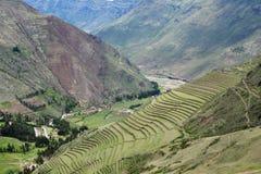 Τακτοποίηση Inca, Pisac, Περού Στοκ εικόνα με δικαίωμα ελεύθερης χρήσης