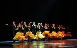 Τακτοποιημένες στήλες - κομψές ο βαλς-παγκόσμιος χορός της Αυστρίας Στοκ Εικόνα