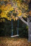 Ταλάντευση κάτω από το δέντρο φθινοπώρου στοκ εικόνα