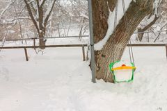Ταλάντευση στο χιόνι χιονώδης χειμώνας δέντρων πάρκων φύσης Ιανουαρίου παγετού ημέρας Στοκ φωτογραφία με δικαίωμα ελεύθερης χρήσης