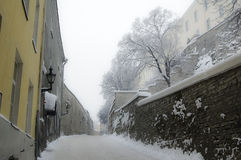 Ταλίν το χειμώνα Στοκ Εικόνες