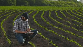 Ταμπλέτα χρήσεων της Farmer στον τομέα του νέου ηλίανθου φιλμ μικρού μήκους