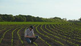Ταμπλέτα χρήσεων της Farmer στον τομέα του νέου ηλίανθου απόθεμα βίντεο
