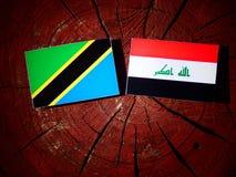 Τανζανική σημαία με την ιρακινή σημαία σε ένα κολόβωμα δέντρων που απομονώνεται Στοκ Φωτογραφία