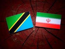 Τανζανική σημαία με την ιρανική σημαία σε ένα κολόβωμα δέντρων που απομονώνεται Στοκ φωτογραφίες με δικαίωμα ελεύθερης χρήσης
