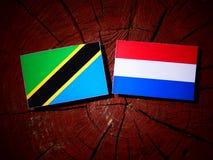 Τανζανική σημαία με την ολλανδική σημαία σε ένα κολόβωμα δέντρων που απομονώνεται Στοκ Εικόνα