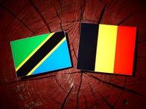Τανζανική σημαία με τη βελγική σημαία σε ένα κολόβωμα δέντρων που απομονώνεται Στοκ Εικόνες