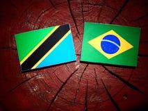 Τανζανική σημαία με τη βραζιλιάνα σημαία σε ένα κολόβωμα δέντρων που απομονώνεται Στοκ Φωτογραφίες
