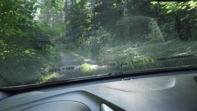 Ταξίδι αυτοκινήτων στις εθνικές οδούς μια θερινή ημέρα φορητός πυροβολισμός καμερών από το αμάξι φιλμ μικρού μήκους