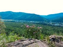 Ταξίδι σε όλο τον κόσμο στα διαφορετικά μέρη της όμορφης άγριας φύσης Στοκ εικόνα με δικαίωμα ελεύθερης χρήσης