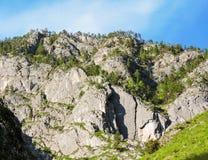 Ταξίδι σε όλο τον κόσμο στα διαφορετικά μέρη της όμορφης άγριας φύσης Στοκ φωτογραφίες με δικαίωμα ελεύθερης χρήσης
