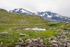 Ταξίδι στα βουνά της Νορβηγίας στο καλοκαίρι Στοκ Φωτογραφία