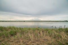 Ταξίδι στην του δέλτα Po del χώρα ποταμών Στοκ Φωτογραφίες