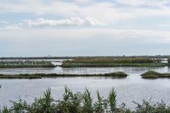 Ταξίδι στην του δέλτα Po del χώρα ποταμών Στοκ Φωτογραφία