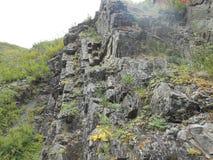 Ταξίδι στους ανθρώπους βουνών και τρόπος στο βράχο κοντά στις εγκαταστάσεις στοκ εικόνα με δικαίωμα ελεύθερης χρήσης