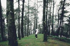 Ταξίδι στο σκοτεινό και κρύο δέντρο ζουγκλών στοκ φωτογραφία με δικαίωμα ελεύθερης χρήσης
