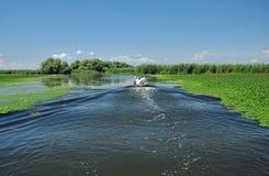 Ταξίδι βαρκών παρατήρησης πουλιών στο δέλτα Δούναβη Στοκ Εικόνες