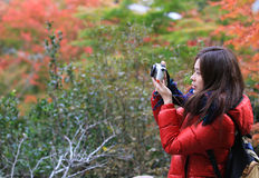 Ταξίδι κοριτσιών για να δει τον κόκκινο σφένδαμνο με το υπόβαθρο της Ιαπωνίας Στοκ εικόνες με δικαίωμα ελεύθερης χρήσης