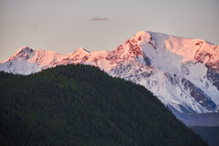 Ταξίδι μέσω των βουνών Altai σε Aktru Πεζοπορία στις χιονώδεις αιχμές των βουνών Altai Επιβίωση στους σκληρούς όρους, όμορφη φύση Στοκ εικόνα με δικαίωμα ελεύθερης χρήσης