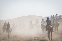 Ταξίδι στην έρημο, Giza, Αίγυπτος Στοκ Φωτογραφίες